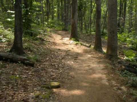 The trail to the campsites is fairly easy.