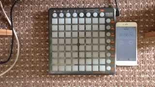 Martin Garrix   Animals (R!OT Drop Edit)   Toxim