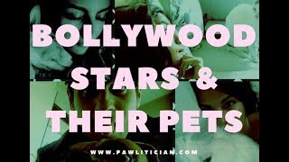 Bollywood Stars and Their Pets -|Ep 3: Pawlitician.com Celebs and Their Pets
