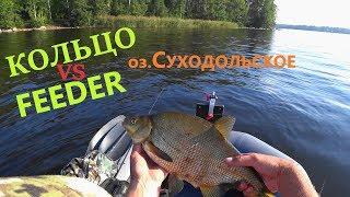 Озеро суходольское ленинградская область рыбалка форум