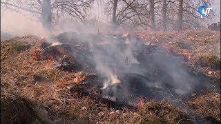 В Великом Новгороде горит вал на Торговой стороне