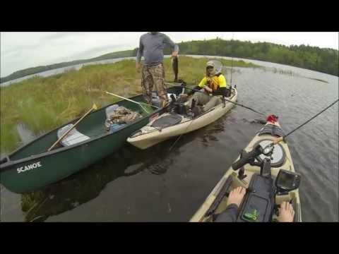 Best Bass Fishing in Secret Pond, Maine 5-23-13