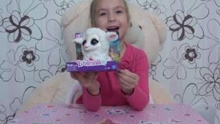 """Поющие зверята Hasbro FurReal Friends от компании Интернет-магазин """"Timatoma"""" - видео"""