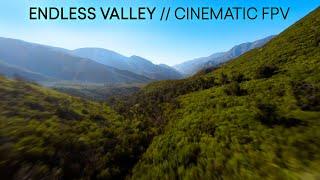 Endless Valley   Micro Long Range   Cinematic FPV