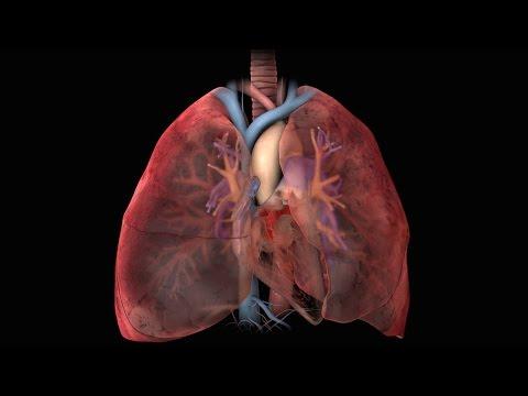 Taquicardia contra la presión sanguínea más baja