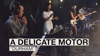 A Delicate Motor on WCPO Lounge Acts!