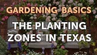 The Planting Zones in Texas