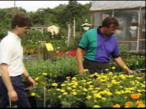Nursery And Greenhouse Managers Jobs