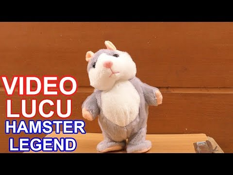 KOMPILASI VIDEO LUCU HAMSTER LEGEND GUDANG TUTORIAL