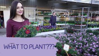 TIPS FOR PLANTING FLOWERS IN POTS. Ideas for planting in spring. What to plant in garden.