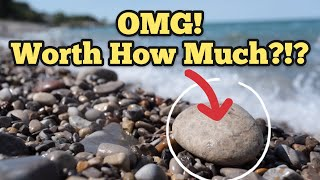 TREASURE HUNTING Petoskey Stone Fossils On Kellys Island Ohio Fossil Hunting How Much Is It Worth?