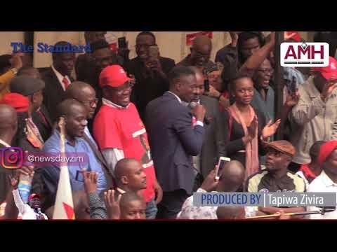 Richard Tsvangirai (Jnr) endorses Chamisa
