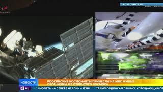 Российские космонавты принесли на МКС живые организмы из открытого космоса
