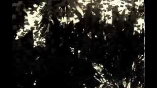 Nhạc Rock Metal Việt Nam - VENT - Foliaceous Angel Part 1 (offiacial music video)
