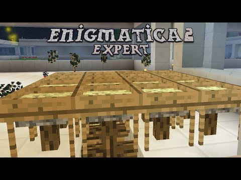 Enigmatica 2 Expert - AUTO SIFTING [E44] (Modded Minecraft