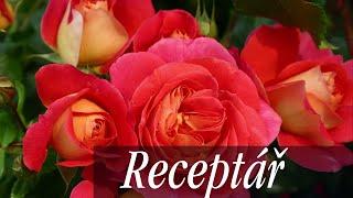 Sázení růží krok za krokem, výběr stanoviště a podmínky pro pěstování růží