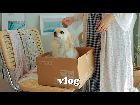 , title : 'vlog • 솜 언박싱ㅣ잠옷대량구입ㅣ손가락골절ㅣ옥수수빙수ㅣ운전연습ㅣ두부덮밥ㅣ달달한 신혼