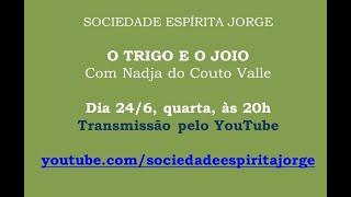 O trigo e o joio – Nadja do Couto Valle – 24/06/2020