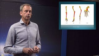 Thumbnail for video: Evolutionsargumenten: Livets mönster - Biblisk kreationism avsnitt 11 - Göran Schmidt