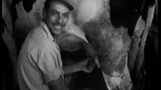 תקופת ההכשרה -הבונים ב-1948-1949(1 סרטונים)