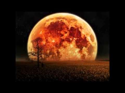 , title : 'Luna canta Riccardo Cocciante ( solo voce e piano )'