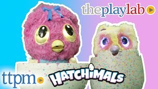 Hatchimals Hatchibabies and Hatchimals Mystery from Spin Master