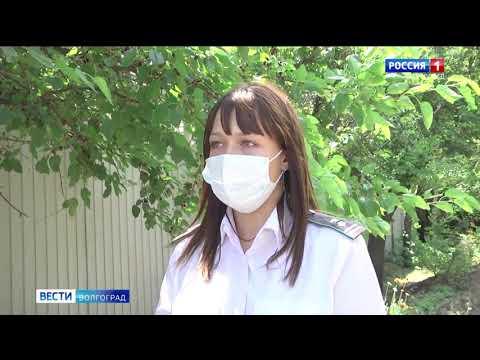 Управление Россельхознадзора проводит на территории Волгоградского региона мероприятия по выявлению карантинных объектов и предотвращению их распространения в садоводческом товариществе