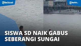 Viral Video Siswa SD Berseragam Naik Kotak Gabus Seberangi Sungai, Netizen Dibikin Terharu