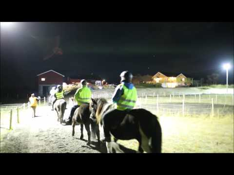 Horseback Ride Under the Northern Lights in Norway