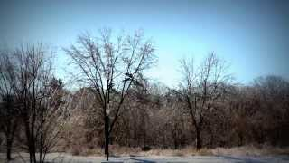preview picture of video 'Beautiful Long Branch -- icestorm or sunshine!'