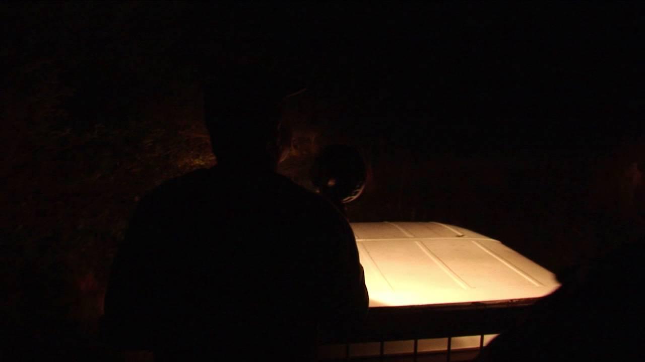 Brasilien: Krokodile bei Nacht (0:43)
