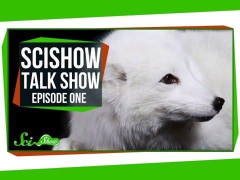 SciShow Talk Show #2