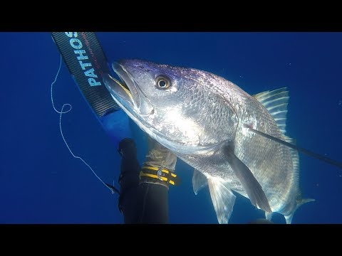 Sport e pescando su Decembrists
