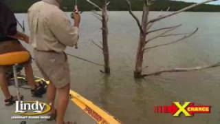Dippin' trees for summer Crappie