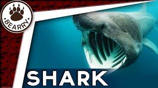 8 พันธุ์ฉลามสุดแปลกรูปร่างชวนสยองที่มีอยู่จริง | The Eight Weirdest Sharks Ever | เรื่องแปลก