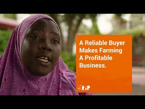 THIS IS OUR JOURNEY: A Reliable Buyer Makes Farming A Profitable Business