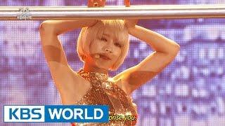 AOA - Like a Cat [2014 KBS Song Festival / 2015.01.14]