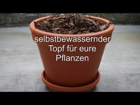 Anleitung: selbstbewässernder Topf / automatische Bewässerung