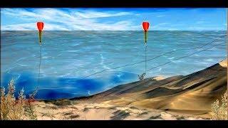 Рыбалка как выбрать место ловли карпа на пруду