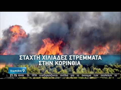 Υποχωρούν οι πυρκαγιές – Εμφανίζονται οι συνέπειές τους | 25/07/2020 | ΕΡΤ