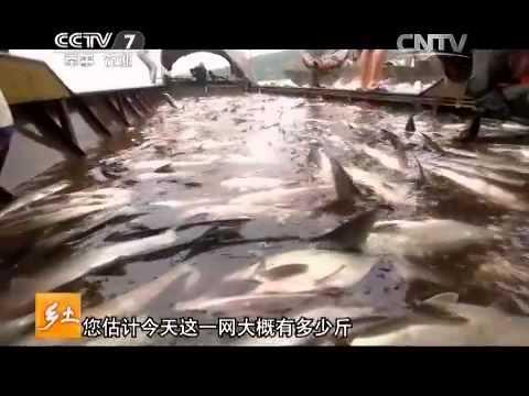 20150803 乡土  魅力凉山西昌味道