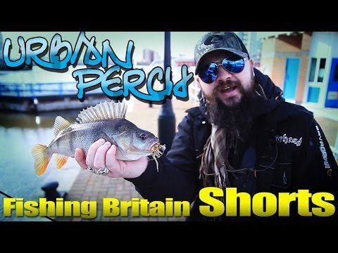 Urban Perch Fishing – Fishing Britain Shorts