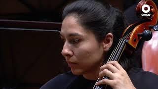 Conciertos OSIPN - Strauss