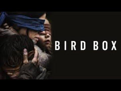 Is the Sandra Bullock Bird Box Movie Really THAT SCARY?!