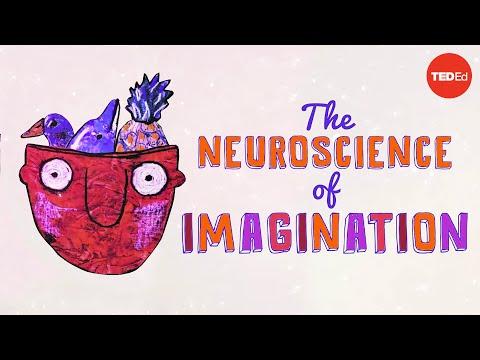 The neuroscience of imagination - Andrey Vyshedskiy