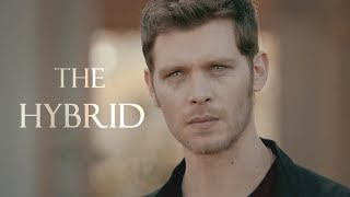 Klaus Mikaelson   The Hybrid