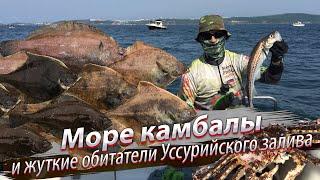 Ловля краба в японском море