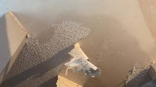 Removing Painted Popcorn Ceiling the EASY way