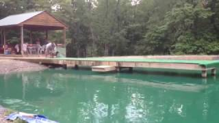 Summer fun Dock Diving in the pond