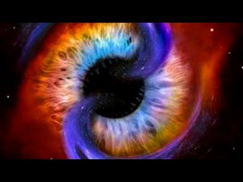 Vedere vasculară